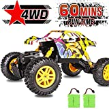 DOUBLE E RC Car Remote Control Car 4WD Monster Truck 2.4Ghz with Two Rechargeable Batteries Dual Motors Unique Graffiti Off Road Toy Cars
