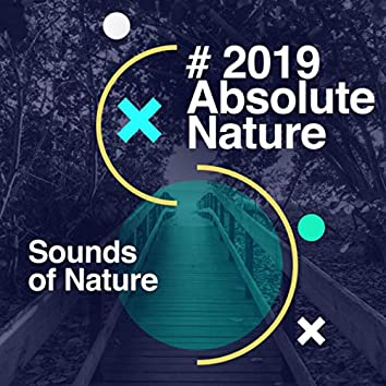 # 2019 Absolute Nature