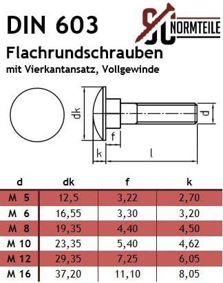20 St/ück - DIN 603 SC603 Vollgewinde M6x25 - Edelstahl A2 V2A mit Vierkantansatz SC-Normteile Flachrundschrauben//Schlossschrauben