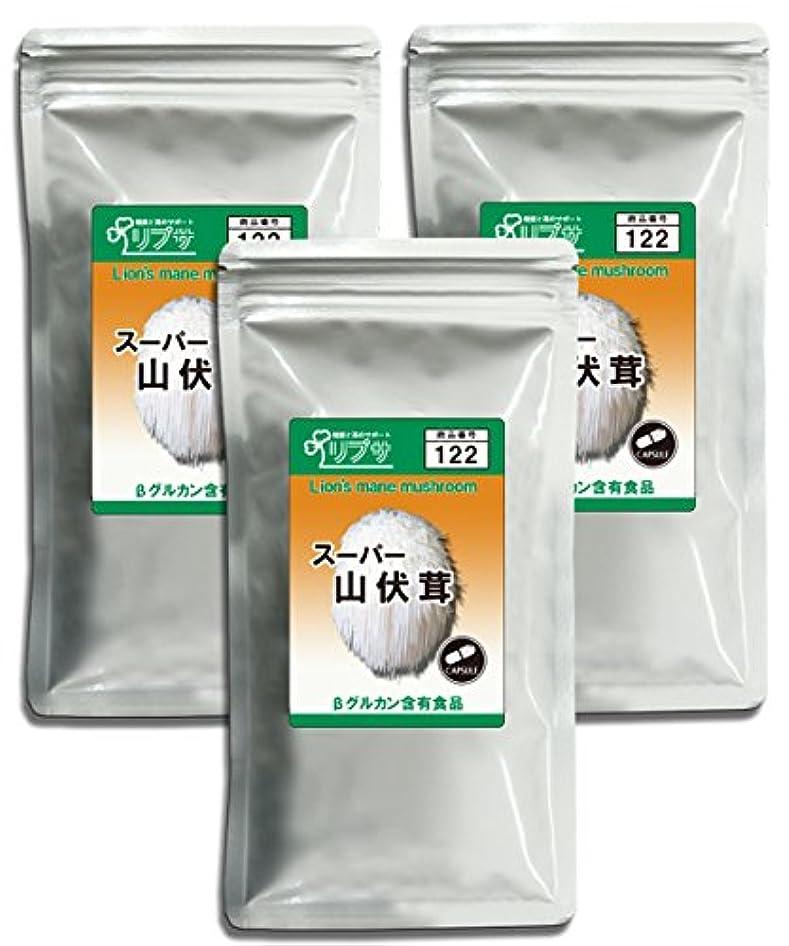 目に見える吐き出す侮辱山伏茸(ヤマブシタケ) 約1か月分×3袋 C-122-3