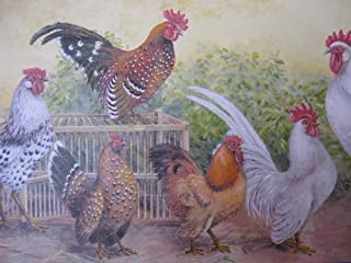 Waverly Chickens Rooster Wallpaper Border