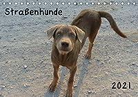 Strassenhunde 2021 (Tischkalender 2021 DIN A5 quer): Liebenswerte Strassenhunde (Monatskalender, 14 Seiten )