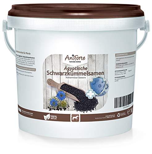 AniForte Ägyptische Schwarzkümmelsamen für Pferde 1kg - Unterstützt den Magen-Darm-Trakt & das Immunsystem, stärkt die Abwehrkräfte, wichtige Aminosäuren, Naturprodukt