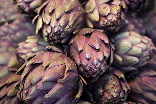 vegherb 9600Mg Lila Artischocken Violetto Chioggia Italienisch Erbstück 230 Samen Perennial