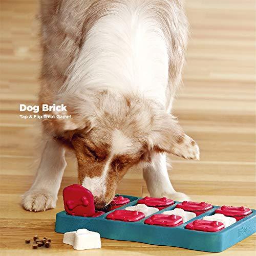 MeterMall Hond Baksteen Tap En Flip Behandel Puzzel Game Box Hond Speelgoed Huisdier Toy Levert Gift