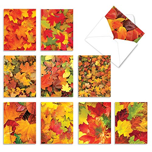 Leaf a Message - 10 Autumn All Occasion Greeting Cards with Envelopes (4 x 5.12 Inch) - Colorful Fall Leaves, Boxed Inspirational Notecard Set M2009