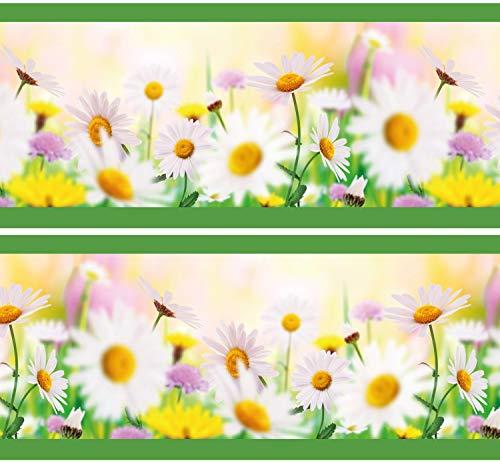Selbstklebende Bordüre Daisyfield, 4-teilig 560x15cm, Tapetenbordüre, Wandbordüre, Borte, Wanddeko,Gänseblümchen, Blumen