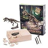 ALLCELE Juguetes de excavación arqueológica de Dinosaurio, Juguetes de Aprendizaje para niños, niños y niñas (Tyrannosaurus)