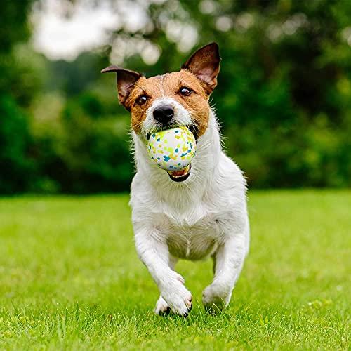 XGYLVFEI Balle pour Chien, Balle Chien Caoutchouc, Balle Chien Indestructible, Jouet en Caoutchouc Dur à mâcher, Nettoyer Les Dents, Jouer, s'entraîner (1 Point Vert)
