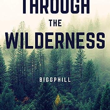 Walk Through the Wilderness