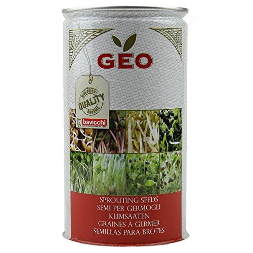 Geo Graine à Germer Fenouil Brun 9,9 x 9,9 x 18 cm