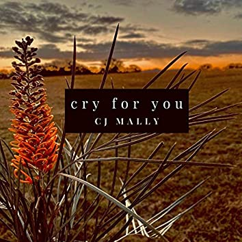 Cry for You