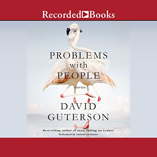 Problems with People audiobook cover art