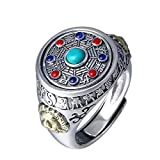 ZiFei Solid Mens Rings Silver S925 Retro Antique Ring for Men with Stones Rotatable Fengshui Jewelry