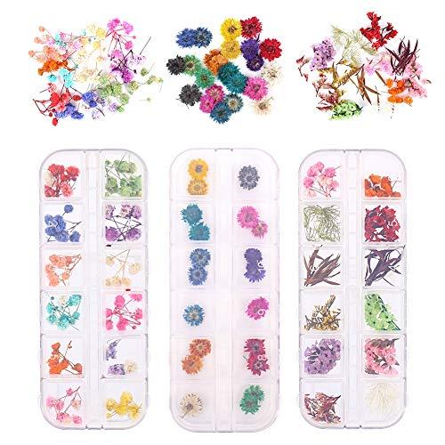 Auxsoul 72 Piezas de Flores Secas para Uñas Decoración Flores en 3D para Uñas Pegatinas de Uñas Flores para Decoración de Arte de Uñas de Moda (3 cajas)