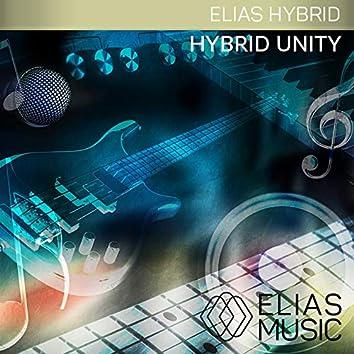 Hybrid Unity