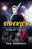 Sidekick: Misadventures of the New Scarlet Knight