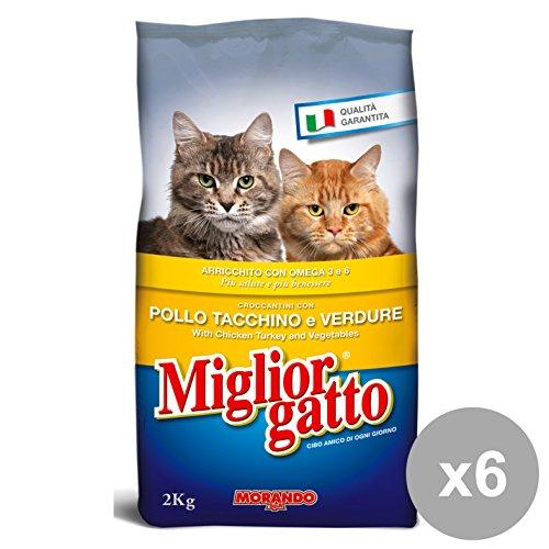 Beste kat voor kattenvoer, vlees, meerkleurig, eenheidsmaat