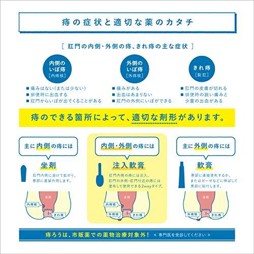 【指定第2類医薬品】ボラギノールA注入軟膏2g×10