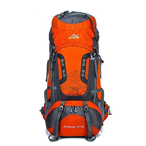 Le nouveau sac d'alpinisme de sports de plein air 80 litres alpinisme sac à dos grande capacité support de sac à dos Voyage