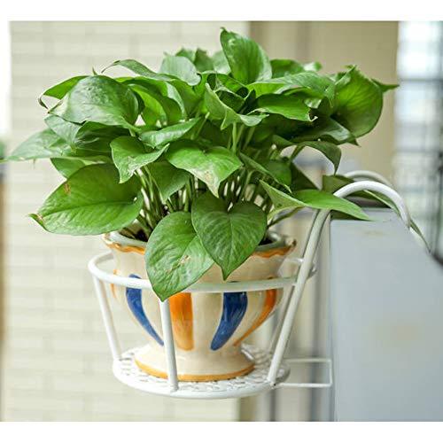 JKXWX Opknoping plant stand, vensterbank beugel opknoping pot, Europese ijzeren reling pot rek, bloempot zaairek outdoor decoraties
