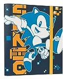Grupo Erik Carpeta 2 anillas troquelada premium Sonic The Gedgehog - Archivador A4 - Carpeta anillas tapa dura / Archivador 2 anillas - Carpeta anillas A4 - Vuelta al cole material escolar, C2AT0032