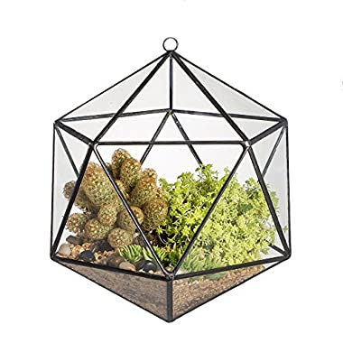 NCYP Wall Hanging Geometric Terrarium Balcony Tabletop Windowsill Decor Glass Flower Pot Modern Large Indoor Garden Micro Lnadschaft Icosahedron Planter Container for Succulent Air Plant Fern