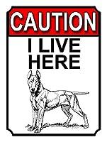 ここに住んでいます 金属板ブリキ看板警告サイン注意サイン表示パネル情報サイン金属安全サイン