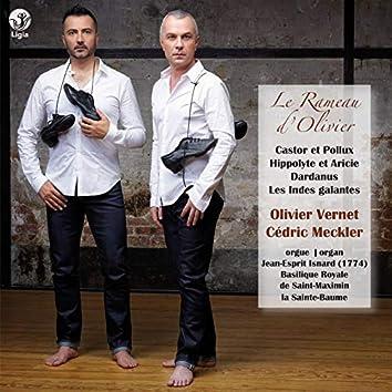 "Rameau : ""Le Rameau d'Olivier"""