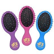 Beautify Beauties Detangler Mini Hair Brush, Travel Size, Perfect for kids (Pink/Purple/Blue)