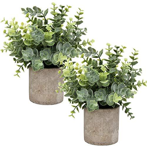 Flojery Mini Topfpflanzen künstlicher Eukalyptus Grün in Töpfen kleine Zimmerpflanzen für Greenery Tabletop Décor Herzstück,Gesprühter Eukalyptus