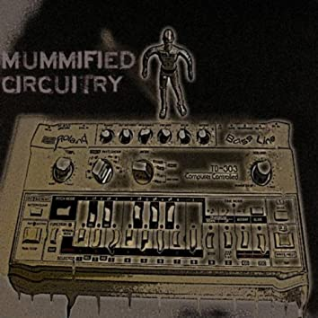Mummified Circuitry