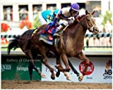 2012 Kentucky Derby Champion I'll Have Another-11x14 Photograph