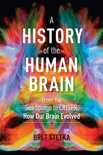 A History of the Human Brain: From the Sea Sponge to CRISPR, How Our Brain Evolved (English Edition)