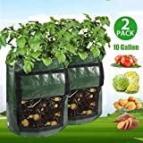 YAMO Potato Grow Bag, 2 Pack 10 Gallon Portable Potato Growing Bag with Handles and Large Harvest Window, Durable Garden Vegetable Planter Container for Potato, Carrot, Onion