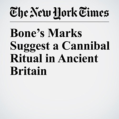Bone's Marks Suggest a Cannibal Ritual in Ancient Britain copertina