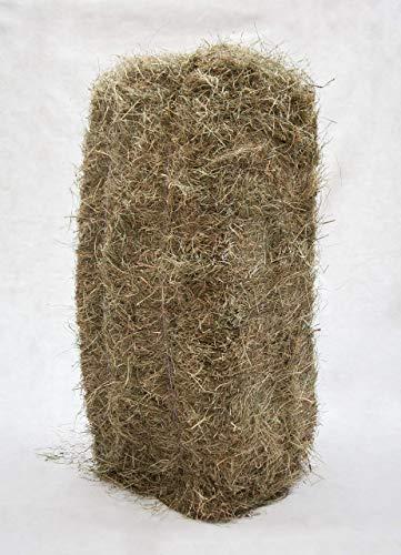Gebrüder Goller 18kg Qualitäts Heuballen, Kaninchenheu, Heu, Ernte 2020