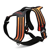 Fit Into Everyway Sturdy Nylon Range Of Front Side No Pull Dog Harness