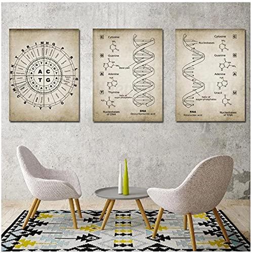 DLFALG Poster retrò Dna e RNA Codice genetico Tela Pittura Stampa Artistica da Parete Immagine Genetica Biologia Chimica Laboratorio Aula Decor-40x60cmx3 Senza Cornice
