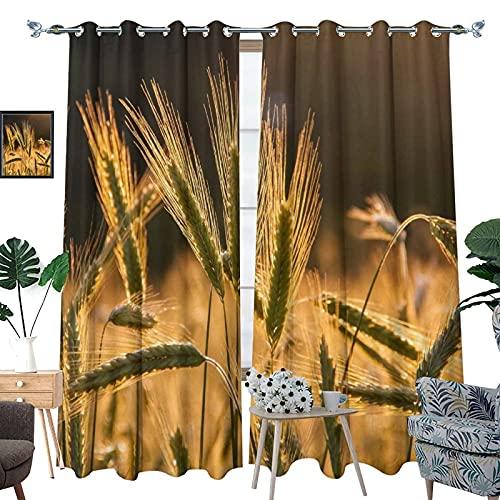 DRAGON VINES Wheats Field - Cortinas opacas con aislamiento térmico para dormitorio, juego de 2 – 55 x 63 pulgadas (140 x 160 cm)