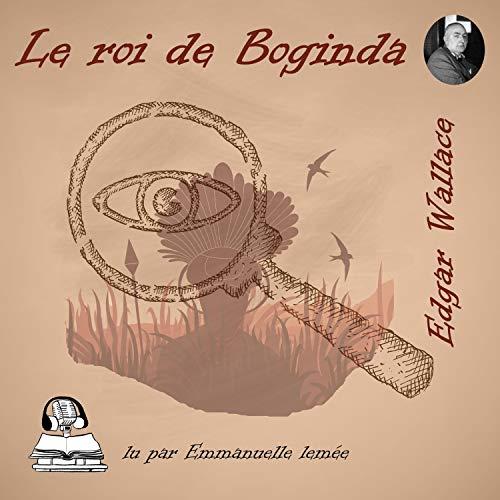 Le roi de Boginda cover art