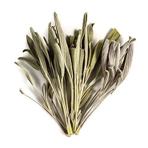 Sauge Feuilles Tisane biologiques Sage - Épices gastronomiques de Grèce - Herbes de cuisine entières cuites - séchées 100g