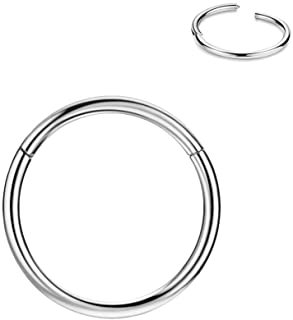 FANSING 316l Surgical Steel Hinged Nose Rings Hoop 20G 18G 16G 14G 12G 10G 8G 6G, Diameter 5mm to 22mm, Gold - Rose Gold - Silver - Black - Blue - Rainbow