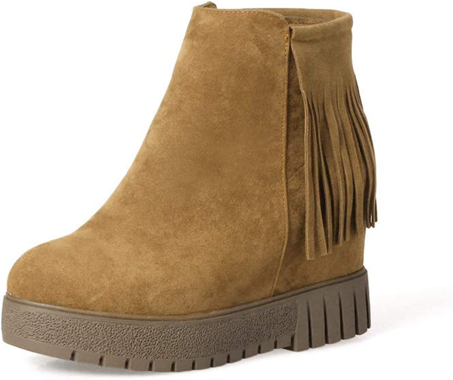 Women Hidden Heel Snow Boots Non-Slip Platform Casual Booties Lady Tassels Wedge Ankle Boots Round Toe