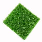 Gazon artificiel avec fausse herbe, miniature, pour maison de poupée ou décoration de jardin