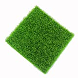 Gefälschte Moss Miniatur Garten Verzierung DIY Pilz Craft Künstliche Rasen Gras