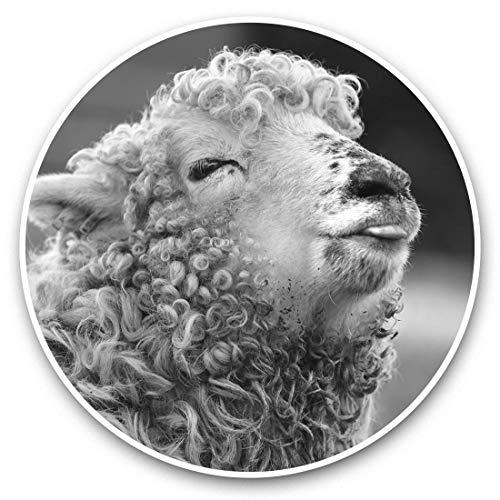 Fantastico adesivo in vinile (set di 2) 30 cm BW – Cheeky Raspberry bacio pecora agnello decalcomanie divertenti per computer portatili, tablet, bagagli, prenotazione rottami, frigorifero, regalo cool #36961