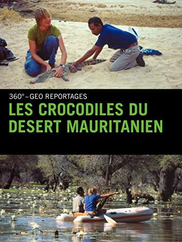 Les crocodiles du desert Mauritanien