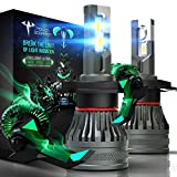 POISON SCORPION H4 LED Bulbs | Extremely Bright CREE Chips 6000K Super Wide Angle | 360 Degree Adjustable Beam 9003 Conversion Kit for Halogen Replacement