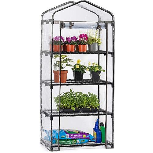 CHRISTOW 4 Tier 5ft Greenhouse, Mini Portable Compact Garden Growhouse,...